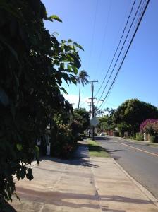 HawaiiNeighborhood2014-03-14 09.34.46