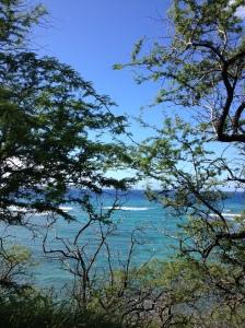 HawaiiWalk2014-03-14 09.54.00