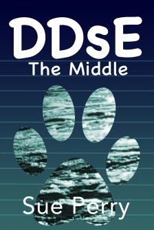 Perry_DDsE_Middlev2